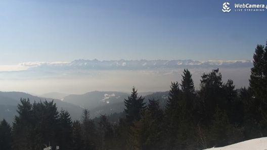 Zima na zamkniętych szlakach w Tatrach Online Kamery.