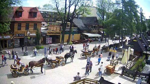 Widok z Kamery na Ulicę Krupówki w Zakopanem na żywo