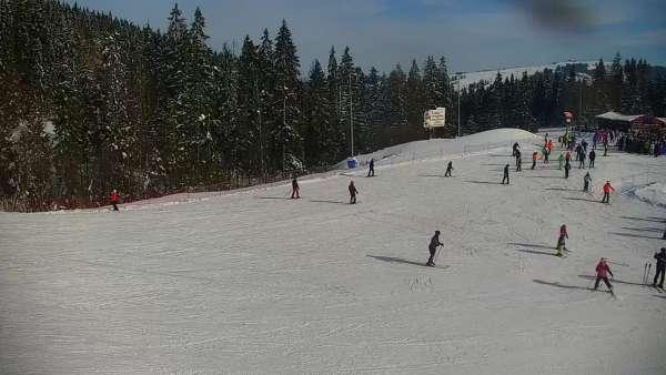 Widok na trasę narciarską nr6 w Kotelnicy Białczańskiej