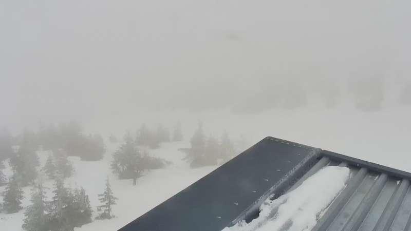 Widok z górnej stacji narciarskiej Ski Arena w Karpaczu
