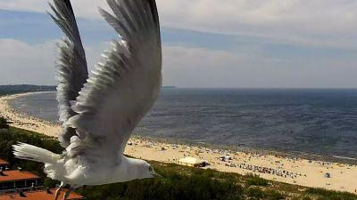 Zdjęcia z kamer nad morzem bałtyckim.