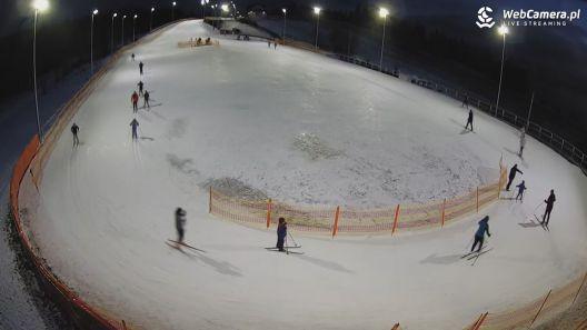 Do uprawiania narciarstwa biegowego nie potrzeba specjalnych umiejętności,